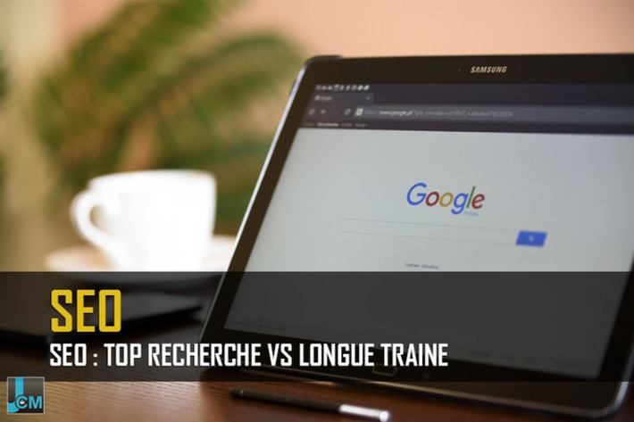 SEO :  La top recherche vs la longue traine | Le Journal du Community Manager | Scoop.it