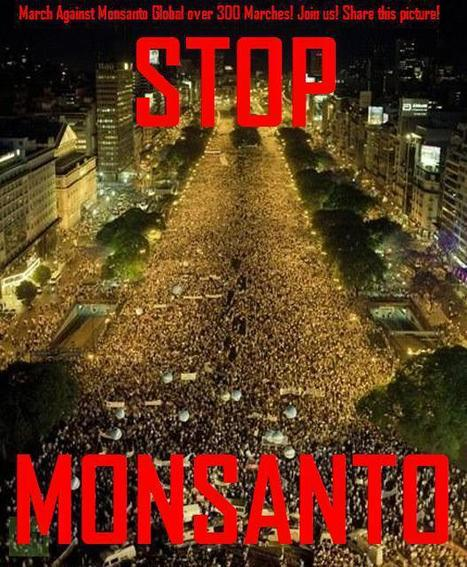Listado de lugares de encuentro   Marcha internacional contra Monsanto - GoogleDocuments   Un poco del mundo para Colombia   Scoop.it