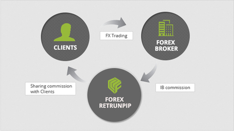 Get online forex commisions   Forex ReturnPIP   Scoop.it