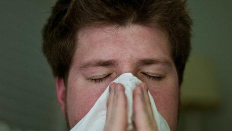 Forscher glauben ein Mittel gegen alle Allergien gefunden zu haben | #Research #Nano #Allergy #Allergies | 21st Century Innovative Technologies and Developments as also discoveries, curiosity ( insolite)... | Scoop.it