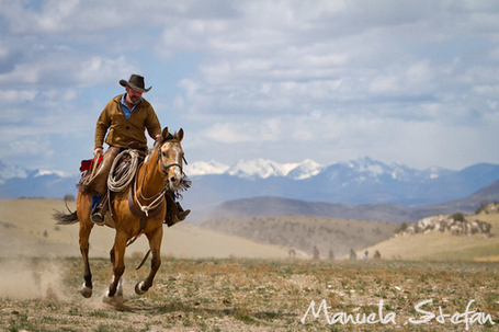 Montana Horse Roundup Photo Journey - By Manuela Stefan on Equitrekking | The Art of the Horse | Scoop.it