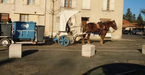 Nérac. Le tri au porte à porte avec le cheval | Cheval et Nature | Scoop.it