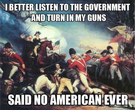 The Second Amendment ...  it's an unalienable human right!   Criminal Justice in America   Scoop.it