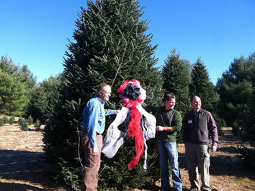 A Tree Fit Fir A President | Mountain Times | North Carolina Agriculture | Scoop.it
