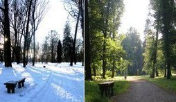Selling a Home in the Summer vs. Selling a Home in The Winter | Investment Property Direct | Scoop.it