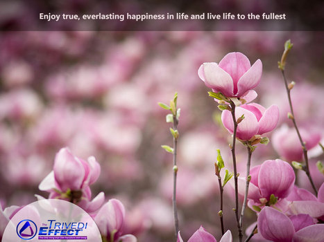 Transformation in life- Your path to true happiness   Health and Wellness   Scoop.it