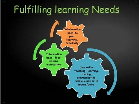 Ten Characteristics Of A Highly Effective Online Teaching System | learner driven | Scoop.it