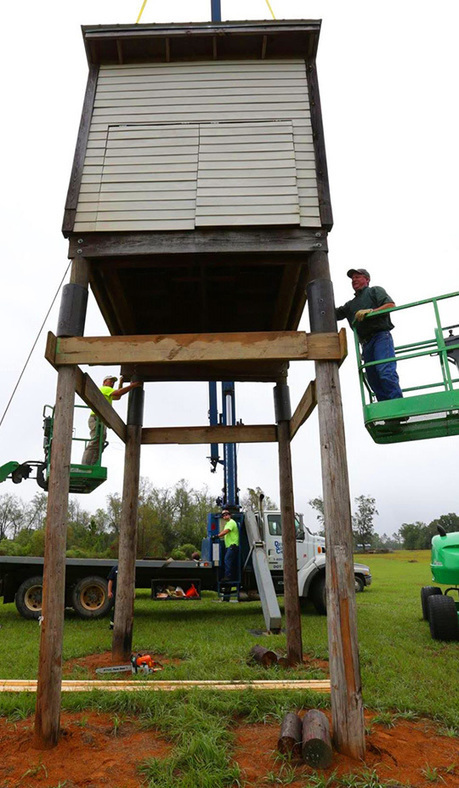 Bat House: Space For 50000 New Residents In Molino - NorthEscambia.com | Bat Biology and Ecology | Scoop.it