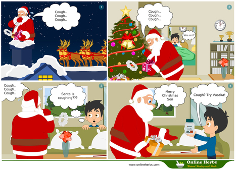 Seize Christmas Deals On Herbal Products Such As Vasaka From Himalaya For Cough And Cold & More!   OnlineHerbs Blog   OnlineHerbs   Scoop.it