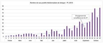 L'épidémie continue : 826 cas de dengue - Les Nouvelles de Tahiti   cellule de crise   Scoop.it