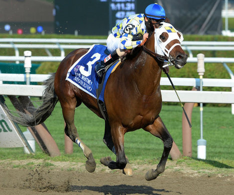 Colorful Trainer and Suddenly Brilliant Gelding Win the Whitney | Horse Racing News | Scoop.it