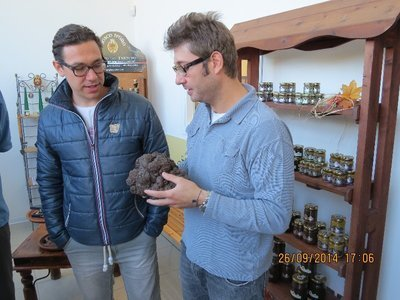 Truffle heaven in Ascoli Piceno: a day with the Staffolani family Bosco D'Oro , truffles, wine, food. | Le Marche another Italy | Scoop.it