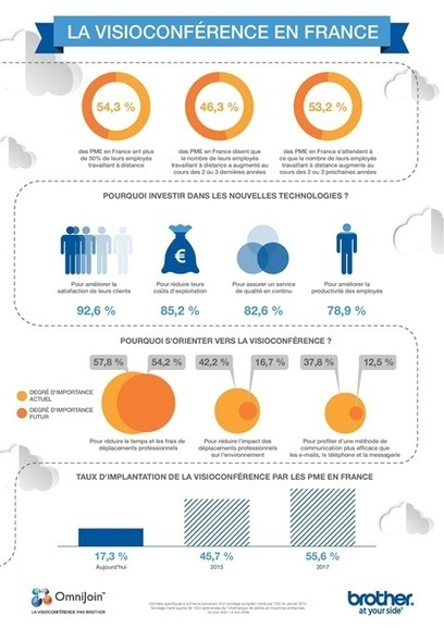 The State of Video Conferencing in France [INFOGRAPHIC | EPIC Infographic | Scoop.it