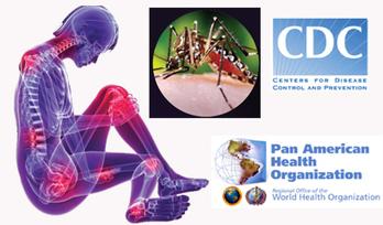 Public Health Authorities Began Preparing for Chikungunya Years Ago - Entomology Today | Mozambique health | Scoop.it
