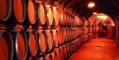 [Dossier] 13 + 8 startups qui font couler le vin à flots dans le monde entier - Maddyness | wine startups | Scoop.it