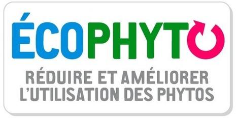 Ecophyto : Le bilan, 3 ans après le lancement | OAT | La Certification Phytosanitaire | Scoop.it