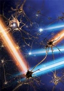 La Optogenética   Investigación Educativa   Scoop.it