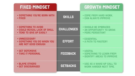Carol Dweck Mindset -The New Psychology of Success | golf psychology | Scoop.it