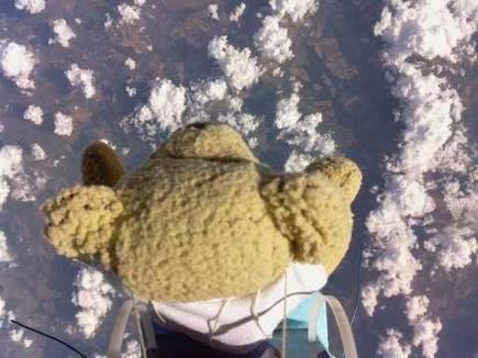 'Ted Bull Stratos': Raspberry Pi controlled teddy bear Babbage beats Felix Baumgartner's skydiving record   pervasive computing   Scoop.it