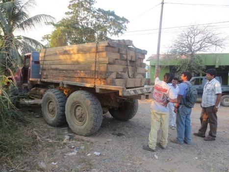 PERÜ: incautan 3 mil pies tablares de madera ilegal de la especie pashaco | Agua | Scoop.it