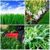 Lawn care, lawn care | home products | Scoop.it
