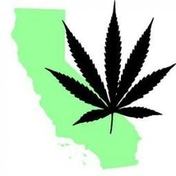Poll: 65 Percent Support Legalizing Marijuana In California In 2016 | Cannabis Law Reform | Scoop.it