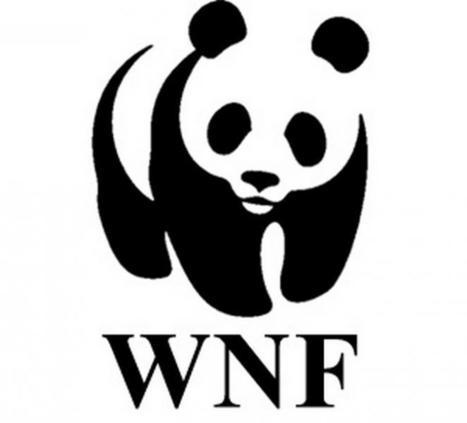WNF start eerste crowdfunding actie tegen stroperij   Crowdfunding NL   Scoop.it
