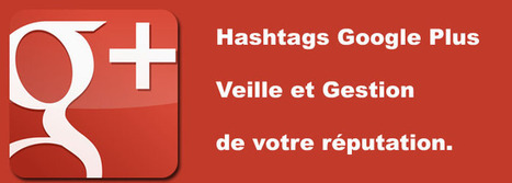 Utiliser le #hashtag Google Plus pour suivre votre réputation ou faire de la veille ? | Marketing Internet News | Scoop.it
