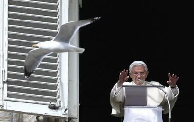 Miles de fieles llegan al Vaticano para penúltimo rezo dominical del ... - El Observador | Mi Portal Catolico | Scoop.it