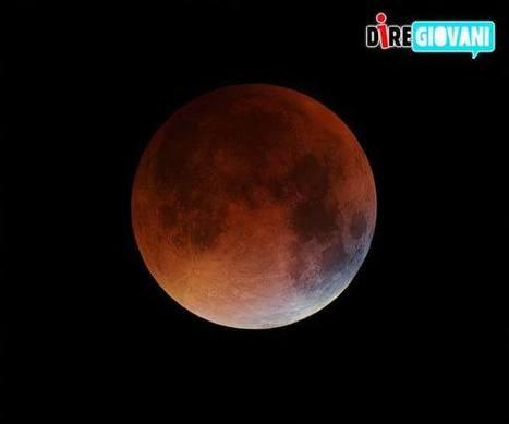 Moonwatch, la Notte della Luna. Gli eventi in Italia e nel Mondo | SCIENTIFICAMENTE | Scoop.it