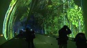 Lyon: ouverture d'un tunnel pour piétons, vélos et bus   Développement durable et écologie   Scoop.it