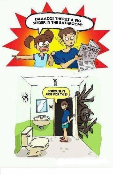 The BathroomWorld Blog: Spiders in the Bathroom! | Bathrooms | Scoop.it