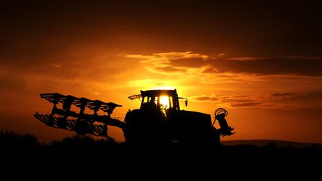 Agriculture: les Etats-Unis vont réduire leur production - BFMTV.COM | VENDRESONBLE | Scoop.it