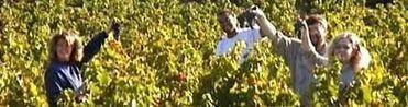 Rendez-vous CARIGNAN à VINISUD - Vinissime   Vinisud 2012 on and off   Scoop.it