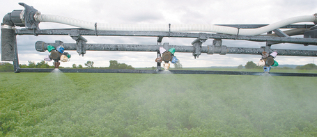 Concerns grow about GM crops and glyphosate causing disease...in humans | YOUR FOOD, YOUR HEALTH: Latest on BiotechFood, GMOs, Pesticides, Chemicals, CAFOs, Industrial Food | Scoop.it