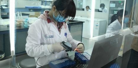 Comment la Chine fabrique ses futurs génies   Sciences   Scoop.it