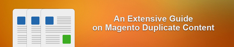 An Extensive Guide on Magento Duplicate Content - Amasty Blog   Magento Extensions   Scoop.it