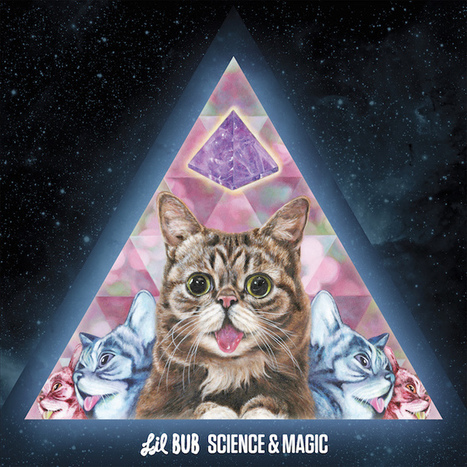 ALBUM. Lil Bub - Science & Magic — | LOL-musique 4ever | Scoop.it