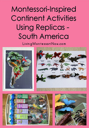 Montessori-Inspired Continent Activities Using Replicas – South America | Montessori Inspired | Scoop.it