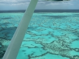 Protecting reef should be priority: poll - NEWS.com.au   Ecosystems at Risk   Scoop.it
