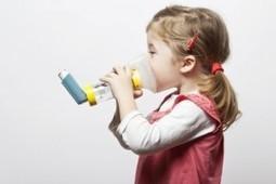 Qualité de l'air intérieur : Les Allergènes Domestiques | Home Testing : Le Blog | ventilairsec | Scoop.it