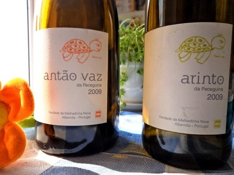 Pingamor: Alentejo / Brancos da Malhadinha | Wine Lovers | Scoop.it
