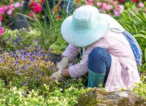 Natural tips to keep gardeners healthy - Ellwood City Ledger | Gardening in the City | Scoop.it