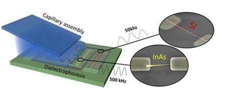 Quand les nanofils trouvent leur place - technosciences | Actualité des laboratoires du CNRS en Midi-Pyrénées | Scoop.it