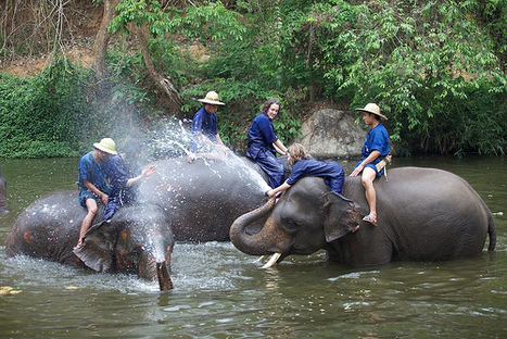 Three day course (most popular) - Mahout Training Course | Agnis Designers Links | Scoop.it