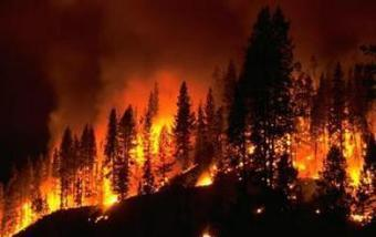 Scientists nearing forecasts of long-lived wildfires' paths | Science Codex | Systems and Modeling in Everyday Life | Scoop.it