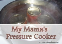 Small Electric Pressure Cooker - Bed Bath and More | Bed Bath and More | Scoop.it