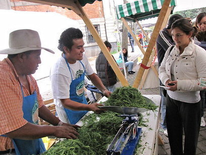 Trading Recyclables for Rosemary - a barter market system to promote recycling (a practical idea) | Yan's Earth | Scoop.it