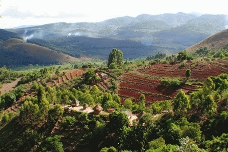 How Permaculture Can Restore Ecosystems & Communities | Farming, Forests, Water & Fishing (No Petroleum Added) | Scoop.it