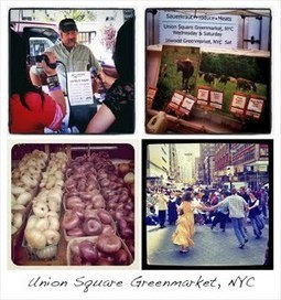 Union Square GreenMarket and Tourist in NYC | Food Meditations | Scoop.it